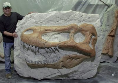 Valley of Bones Feature TRex Skull